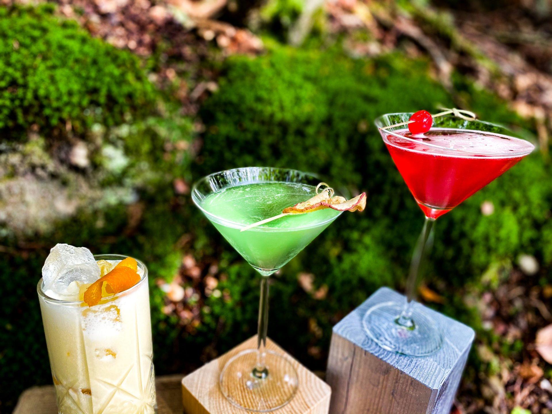 Drei verschiedenfarbige Cocktails