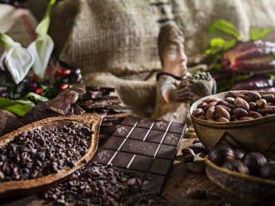 Schokolade und Schokobohnen