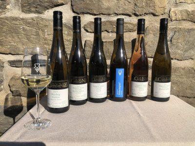 Sechs Weinflaschen und ein Glas auf Tisch